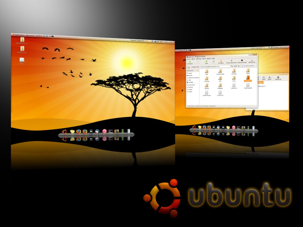 ubuntu_presentation